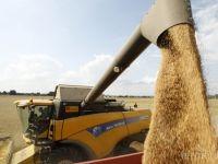 ЕК: България рязко е увеличила базата си за съхранение на зърно