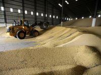 Правилното съхранение на зърното – гаранция за успех